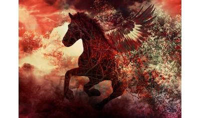 Papermoon Fototapete »Apocalypse Fantasy Horse« kaufen
