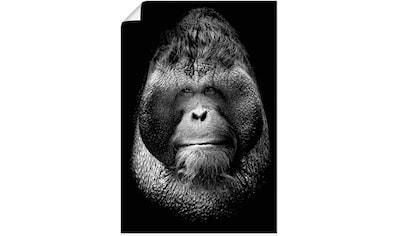 Artland Wandbild »Der Chef«, Affenbilder, (1 St.), in vielen Größen & Produktarten -... kaufen