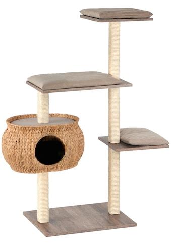 SILVIO design Kratzbaum »Katzenboy Cosy«, hoch, BxTxH: 40x115x130 cm kaufen