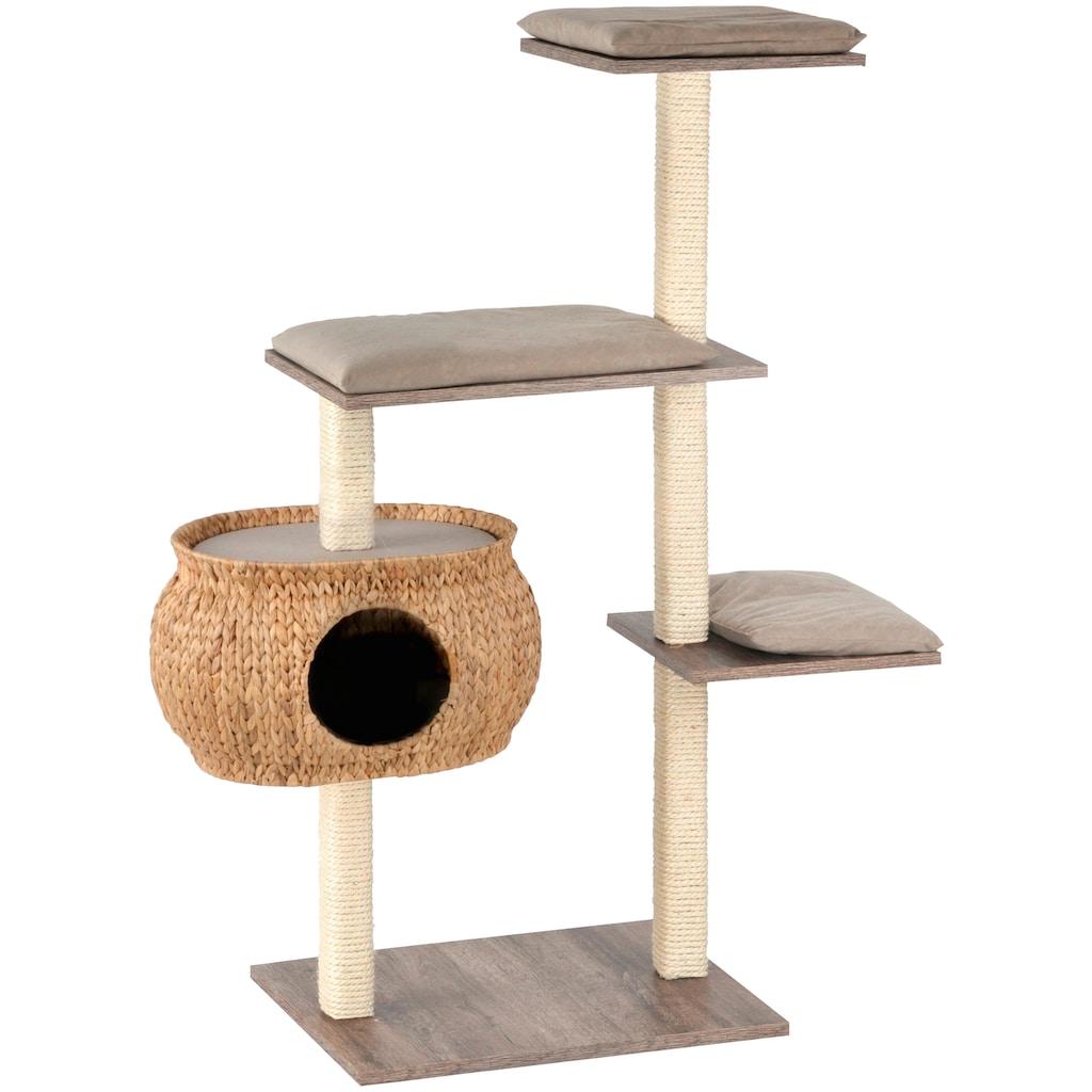 SILVIO design Kratzbaum »Katzenboy Cosy«, hoch, BxTxH: 40x115x130 cm