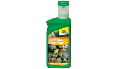 NEUDORFF Pflanzenschutzmittel »Promanal Neu Austriebsspritzmittel«, 500 ml kaufen