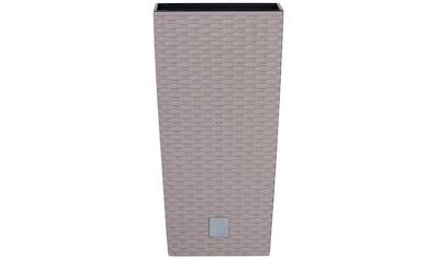 Prosperplast Pflanzkübel »Rato square«, BxTxH: 17x17x32,4 cm kaufen