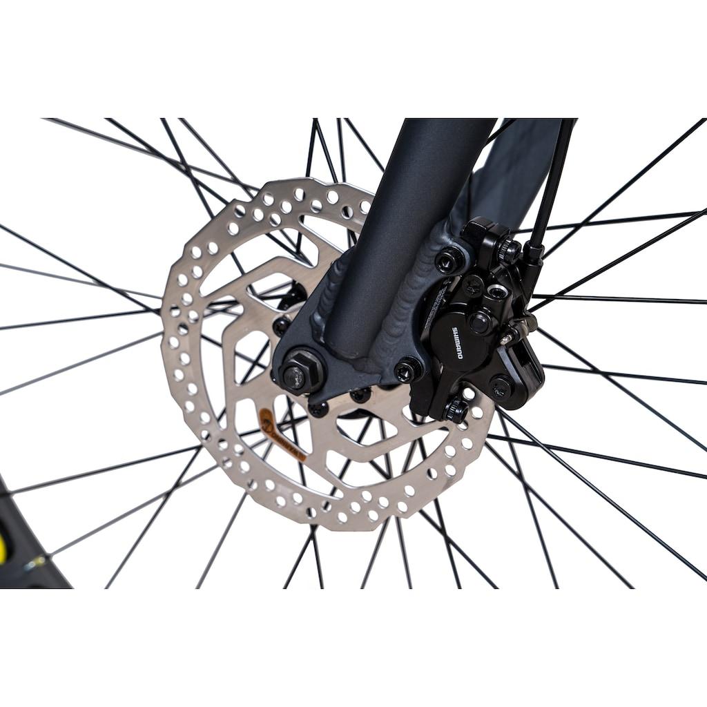 Chrisson Fatbike »Fat Four«, 10 Gang, Shimano, Deore RD-M6000-GS Schaltwerk, Kettenschaltung