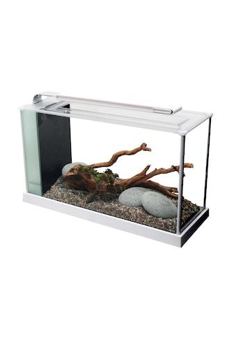 FLUVAL Aquarium »Nano-Aquarium Spec 5«, BxTxH: 52x19x29,5 cm, 19 l kaufen