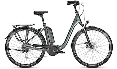 Raleigh E - Bike »KINGSTON 9«, 9 Gang Shimano Alivio Schaltwerk, Kettenschaltung, Mittelmotor 250 W kaufen