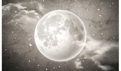 Consalnet Vliestapete »Grauer Mond auf Beton«, Motiv kaufen