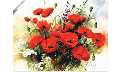 Artland Wandbild »Blumen Zusammenstellung III« kaufen