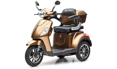 ECONELO Elektromobil »JL1000«, 1000 W, 25 km/h (mit Topcase) kaufen