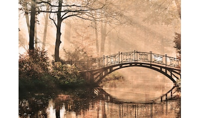 LIVINGWALLS Fototapete »Designwalls Park Bridge 2«, Premium Vlies kaufen