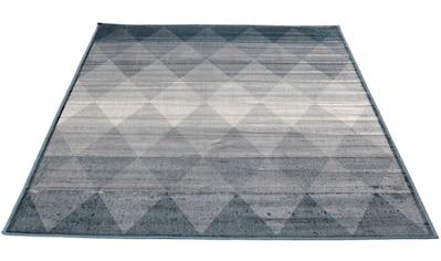 Teppich, »Clara Raute«, Living Line, rechteckig, Höhe 4 mm, maschinell gewebt kaufen