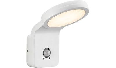Nordlux LED Außen-Wandleuchte »Marina Flatline Pir Sensor«, LED-Board, Warmweiß, mit... kaufen