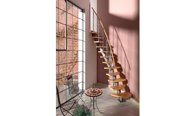 DOLLE Systemtreppe »Berlin«, Edelstahlgeländer mit Holzhandlauf aus Buche, BxH: 64x247 cm kaufen