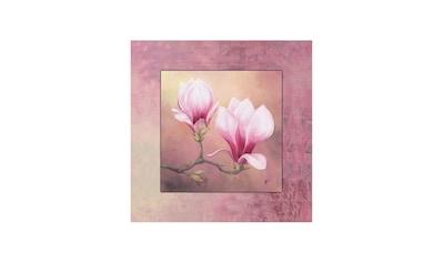 Home affaire Wandbild »Late Magnolia« kaufen
