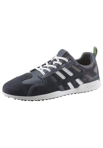Geox Sneaker »Snake«, mit gepolsterter Lederinnensohle kaufen