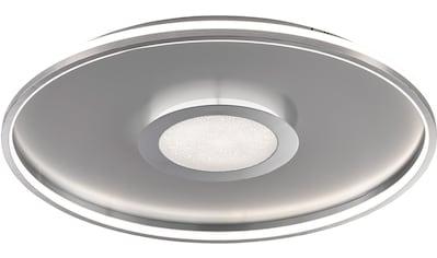 FISCHER & HONSEL LED Deckenleuchte »Bug«, LED-Board, 1 St., Warmweiß kaufen