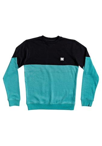 DC Shoes Sweatshirt »Rebel« kaufen