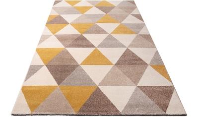 my home Teppich »Sarina«, rechteckig, 14 mm Höhe, Modernes Design, Wohnzimmer kaufen