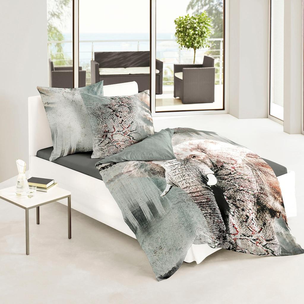 BIERBAUM Wendebettwäsche »Elefant«, im Digitaldruck