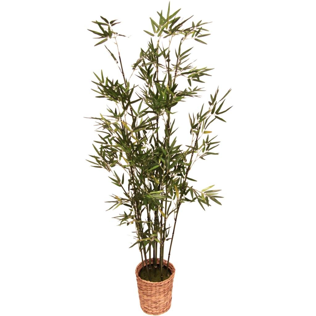 I.GE.A. Kunstpflanze »Bambus«