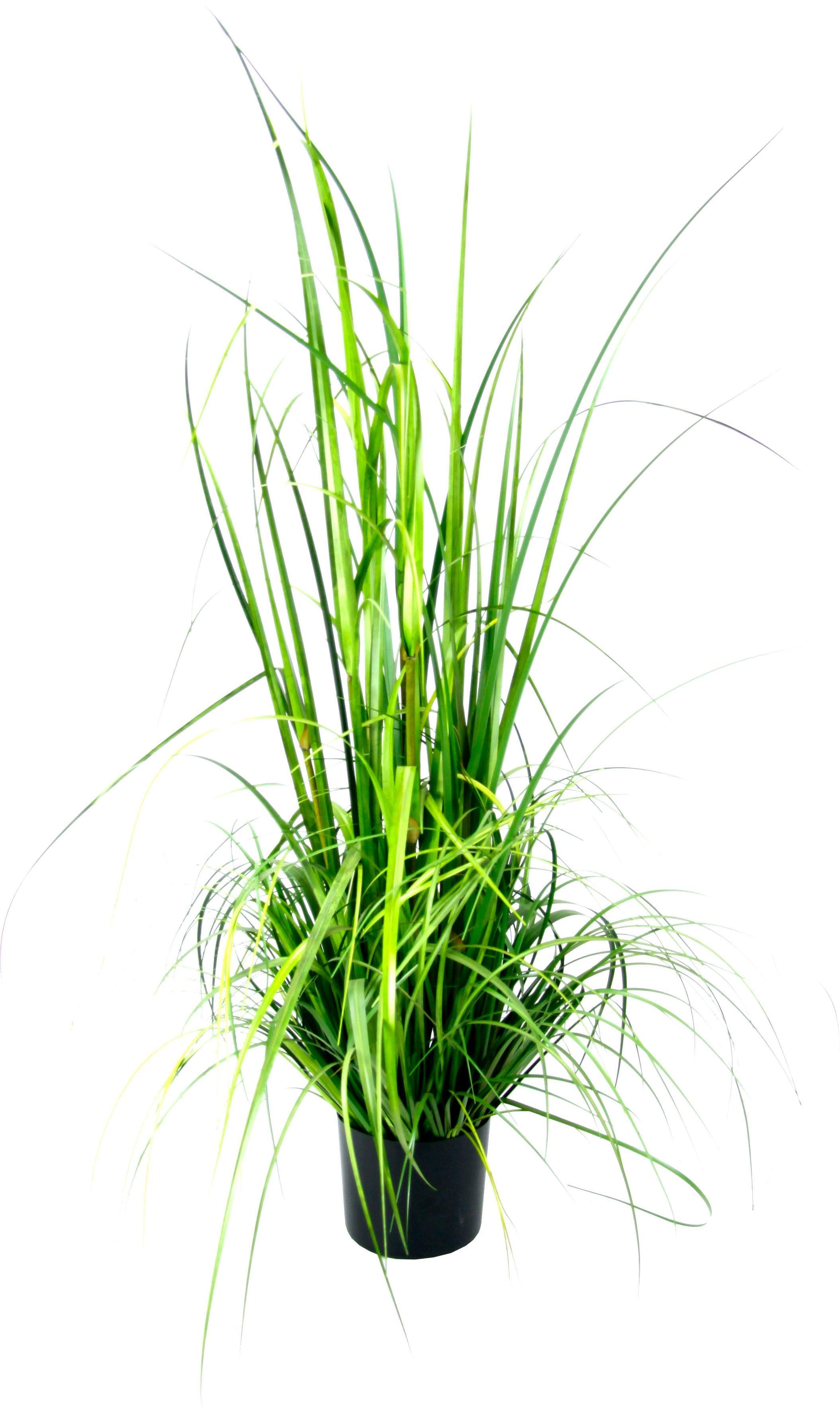 I.GE.A. Kunstpflanze Gras im Topf grün Künstliche Zimmerpflanzen Kunstpflanzen Wohnaccessoires