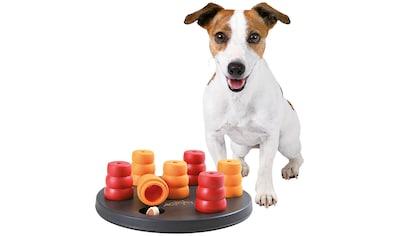 TRIXIE Tier-Intelligenzspielzeug »Mini Solitär«, Kunststoff kaufen