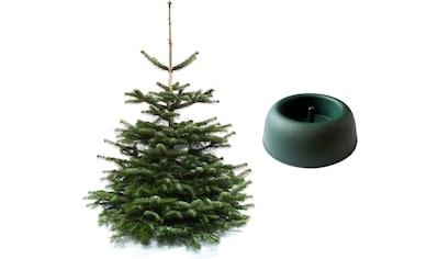 Weihnachtsbaumland Echter Weihnachtsbaum »Nordmanntanne inkl. Mini-Baumständer«,... kaufen