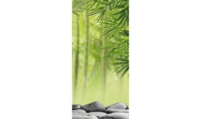 Sanotechnik Duschrückwand »Sanowall«, Höhe: 250 cm kaufen