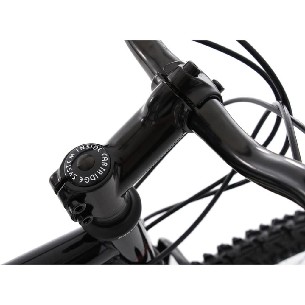 KS Cycling Mountainbike »Triptychon«, 21 Gang, Shimano, Tourney Schaltwerk, Kettenschaltung