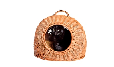 SILVIO design Tierkorb, in versch. Größen kaufen