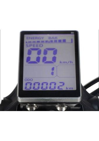 Forca E-Scooter »Camper Basic 20 km/h Safety mit Nabenmotor (inkl. Blinker +... kaufen