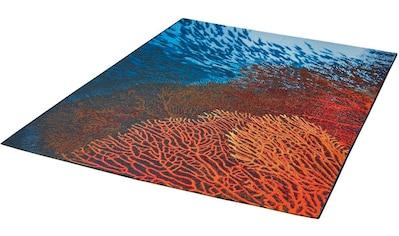 Dekowe Teppich »Ocean«, rechteckig, 5 mm Höhe, Flachgewebe, In- und Outdoor geeignet, Wohnzimmer kaufen
