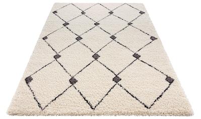 MINT RUGS Hochflor-Teppich »Create«, rechteckig, 35 mm Höhe, besonders weich durch Microfaser, Wohnzimmer kaufen