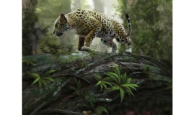 Papermoon Fototapete »Jaguar on the Prowl« kaufen