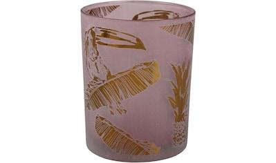 AM Design Windlicht »NATURE«, mit Motiv, aus Glas kaufen