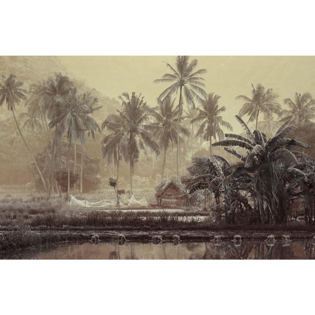 Papermoon Fototapete »Sepia Tropenwald«, Vliestapete, hochwertiger Digitaldruck