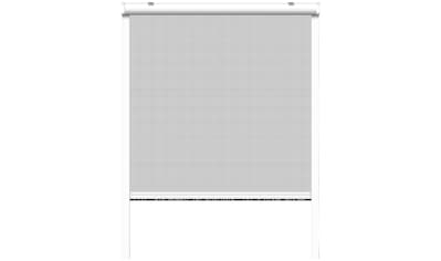 SCHELLENBERG Set: Insektenschutz - Rollo BxH: 160x160 cm, Rahmen weiß kaufen