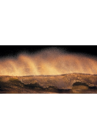 Komar Vliestapete »Hefele Golden Wave«, naturalistisch kaufen