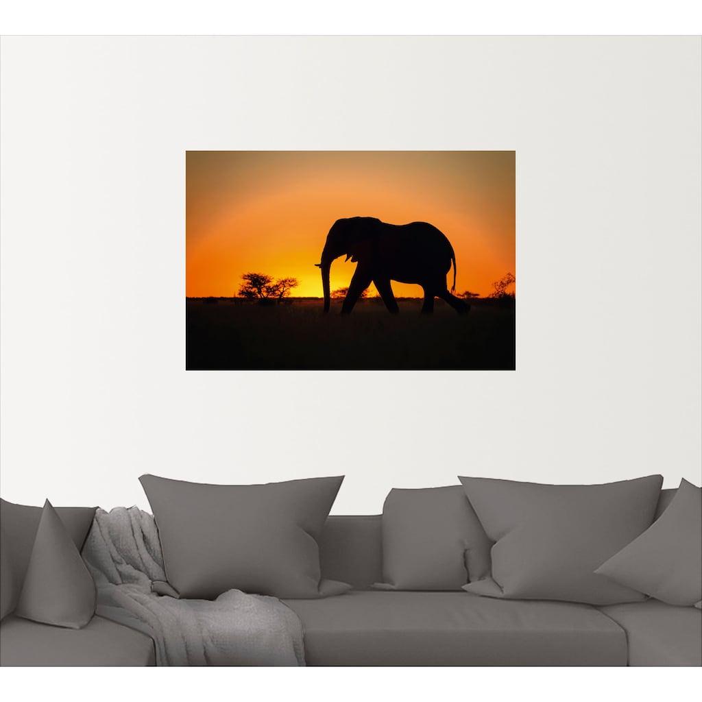 Artland Wandbild »Afrikanischer Elefant im Sonnenuntergang«, Wildtiere, (1 St.), in vielen Größen & Produktarten - Alubild / Outdoorbild für den Außenbereich, Leinwandbild, Poster, Wandaufkleber / Wandtattoo auch für Badezimmer geeignet