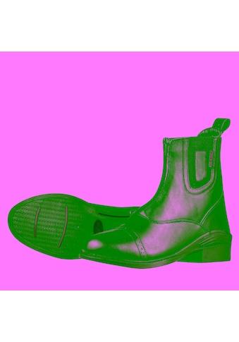 Dublin Stiefel »Damen Evolution Zip Front Leder Paddock etten Wasserfest« kaufen