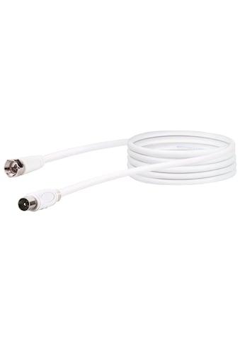 SCHWAIGER HDTV Satelliten - / Antennenadapterkabel, 2 - fach geschirmt »F - Stecker zu IEC Stecker« kaufen