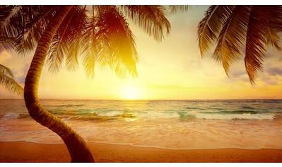 Papermoon Fototapete »Tropischer Strand Sonnenaufgang«, Vliestapete, hochwertiger... kaufen