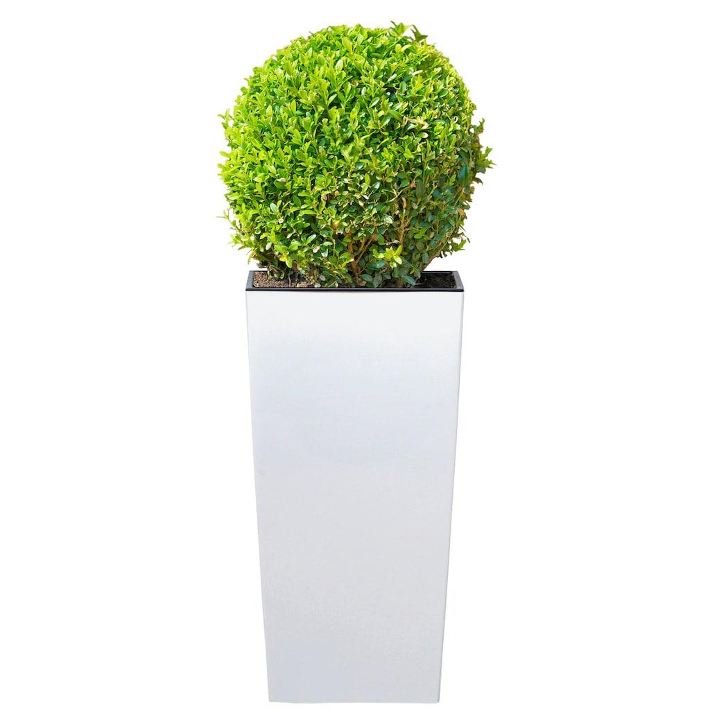 Prosperplast Blumentopf »Urbi Square 325«, BxTxH: 33x33x61 cm