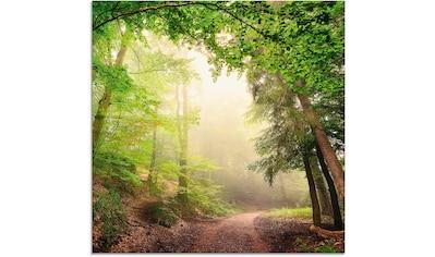 Artland Glasbild »Natürliche Torbögen durch Bäume«, Wald, (1 St.) kaufen