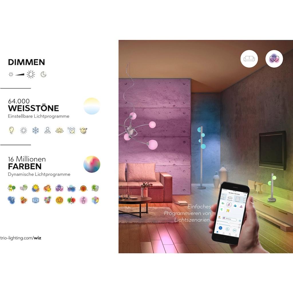 TRIO Leuchten LED Tischleuchte »DAMIAN«, E27, Extra-Warmweiß-Warmweiß-Neutralweiß-Kaltweiß-Tageslichtweiß, Mit WiZ-Technologie für eine moderne Smart Home Lösung