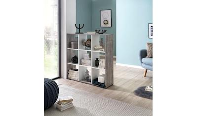 """Wilmes Raumteilerregal """"Kaba"""" kaufen"""
