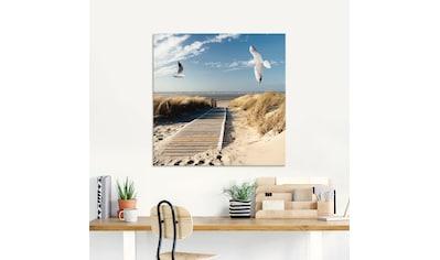 Artland Glasbild »Nordseestrand auf Langeoog mit Möwen«, Strand, (1 St.) kaufen