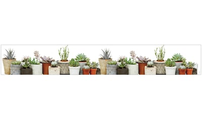 MySpotti Fensterfolie »Look Succulents«, halbtransparent, glattstatisch haftend, 200 x... kaufen