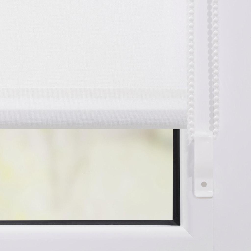 LICHTBLICK ORIGINAL Seitenzugrollo »Klemmfix Motiv Magnolie«, Lichtschutz, ohne Bohren, freihängend, bedruckt