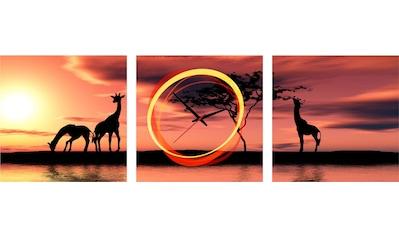 Conni Oberkircher´s Bild »Girafes in the Sunset«, Giraffen, (Set), mit dekorativer Uhr kaufen