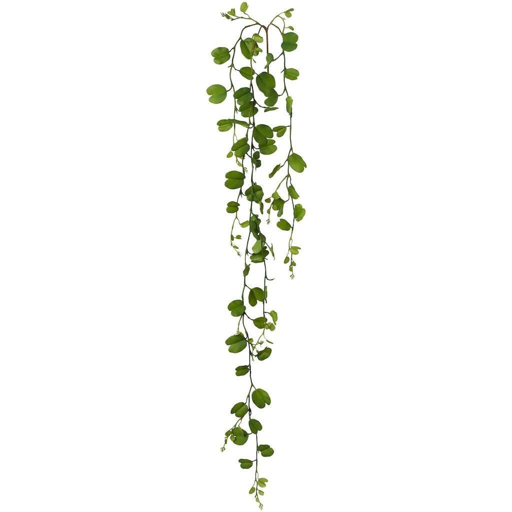 Creativ green Kunstgirlande »Bauhiniablattgirlande«